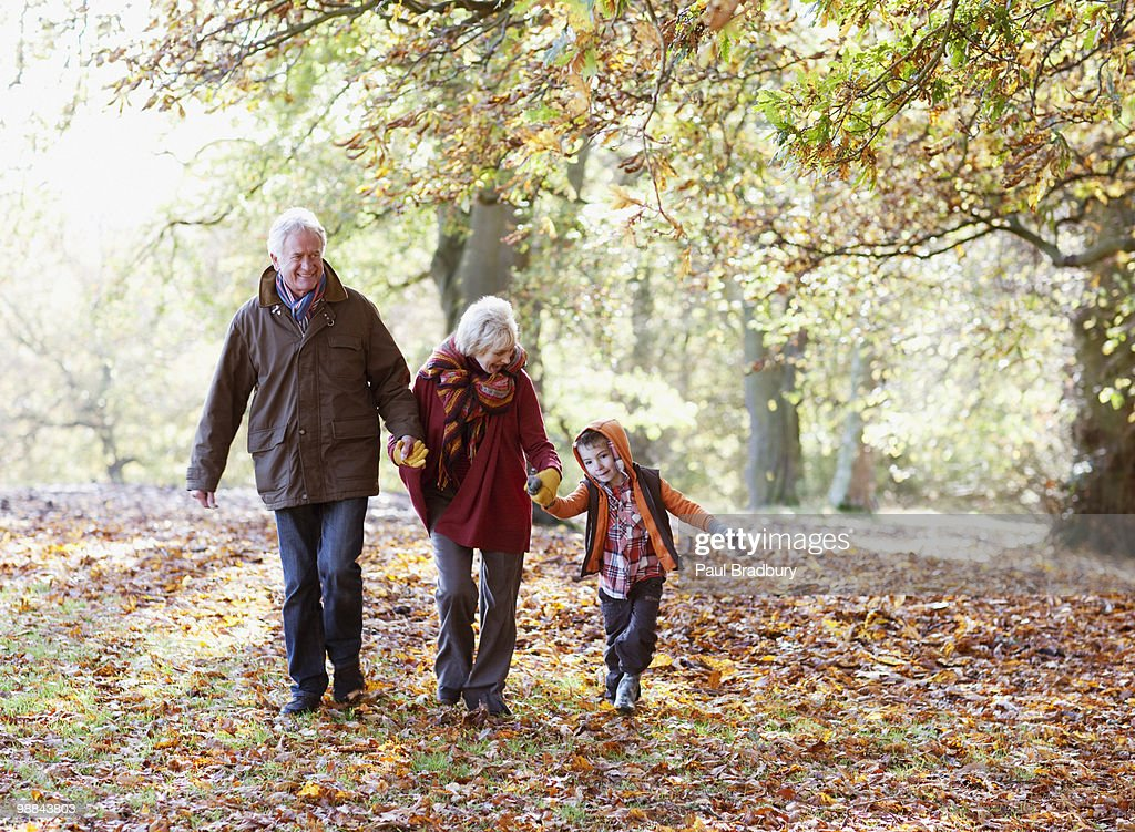 Grandparents playing in park with grandson : Stock Photo