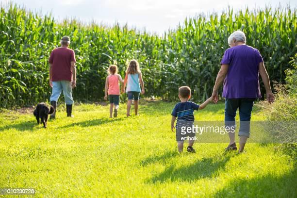 abuelos y tres nietos jóvenes dando paseo en la granja - región central de eeuu fotografías e imágenes de stock