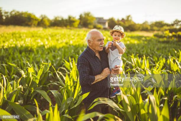 Grandson and his grandfather on the corn farm
