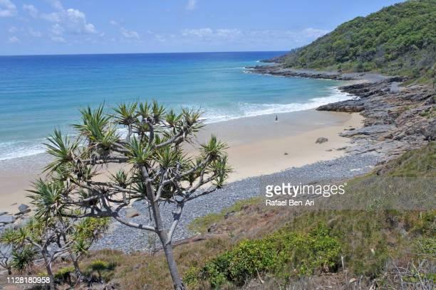 granite bay in noosa heads - rafael ben ari stock-fotos und bilder