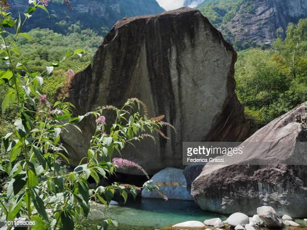 Granite Boulders Along The Bavona Mountain Stream