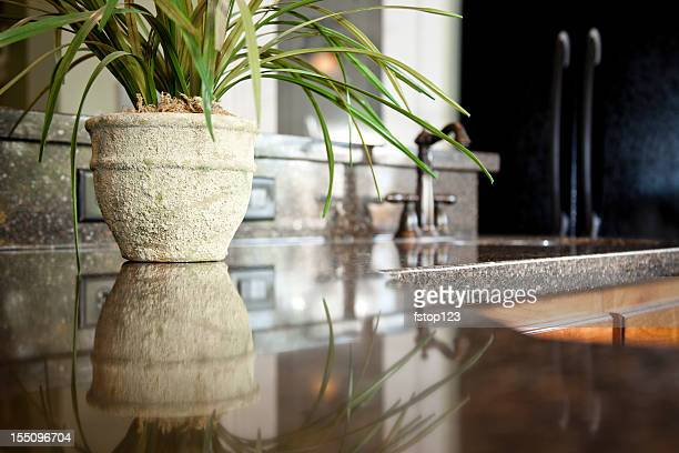 Granite kitchen counter with sink and pot plant.