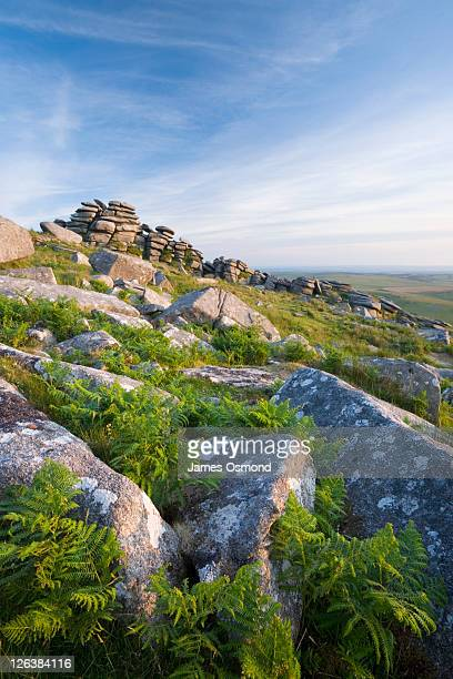 Granite rock formations on the summit of Rough Tor, Bodmin Moor. Cornwall. England. UK.