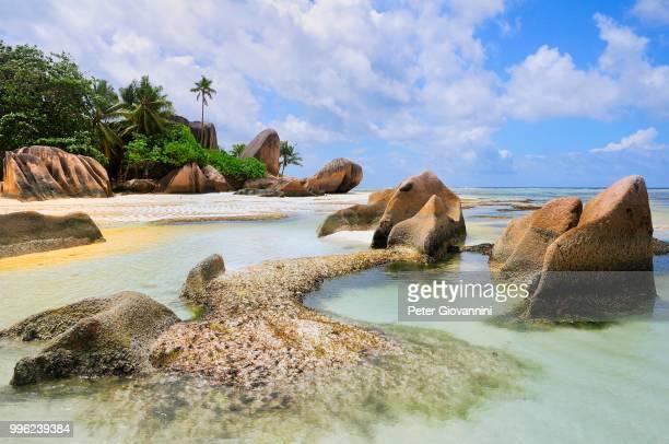 Granite rocks and palm trees on Anse la Reunion beach, La Digue island, La Digue and Inner Islands, Seychelles