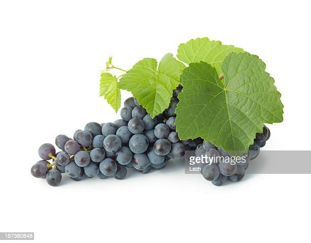 grape cluster - grape stock pictures, royalty-free photos & images