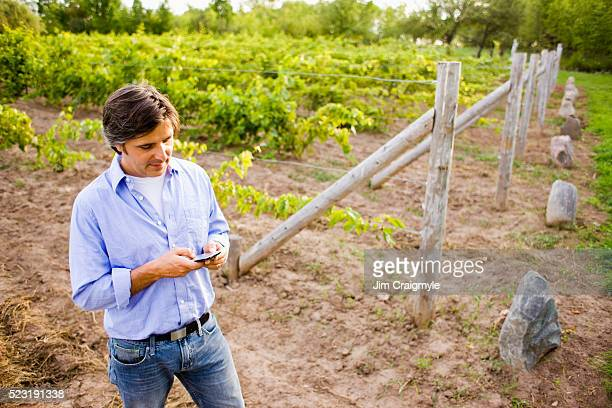 grape farmer text messaging - jim farmer stock photos and pictures