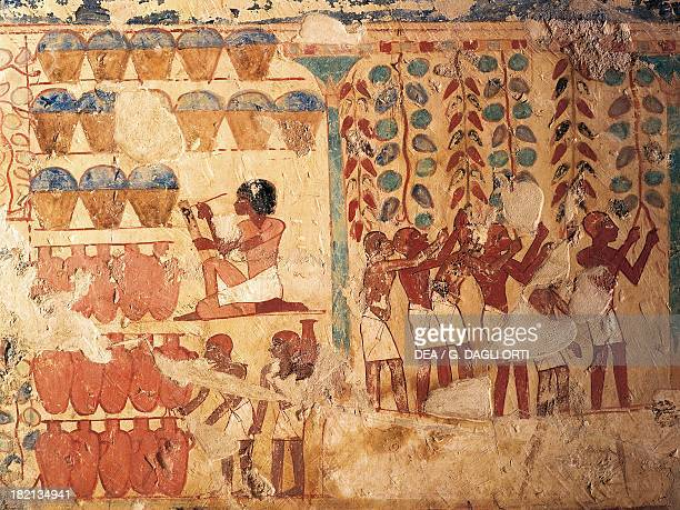 Grape harvest scene with scribes counting the wine vessels 14501425 BC mural painting on the tomb of Userhat necropolis of Sheik abd el Gurna Ancient...