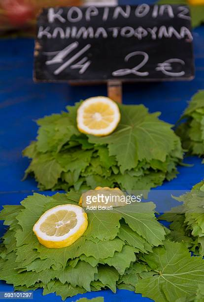 grape leaf and lemon - grape leaf stock pictures, royalty-free photos & images