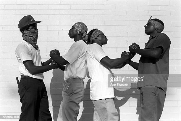60 Top Crips Pictures, Photos, & Images - Getty Images