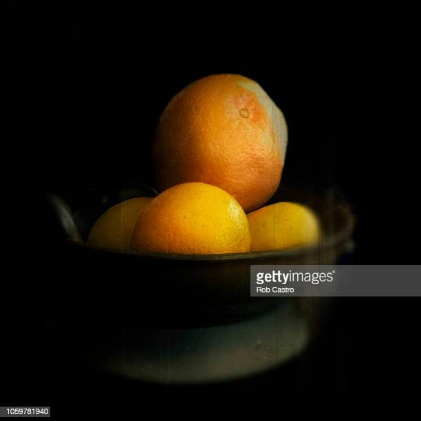 grapefruits - rob castro stock pictures, royalty-free photos & images
