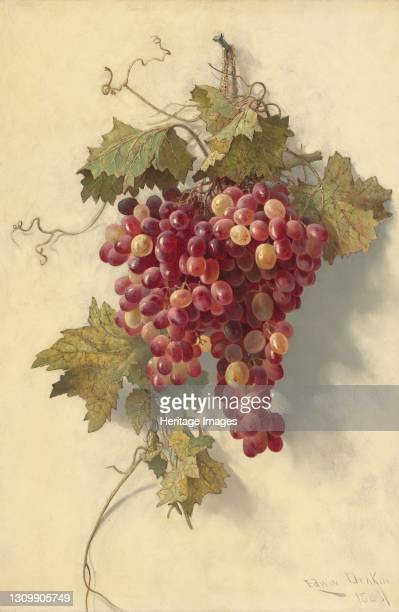 Grapes Against White Wall, 1883. Artist Edwin Deakin. .