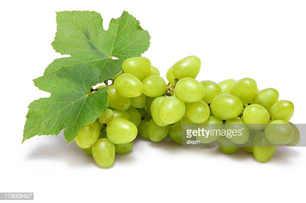 grapes cluster - white grape stock photos and pictures