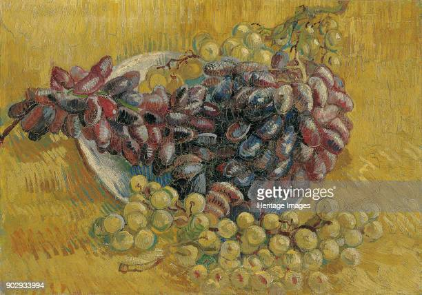 Grapes Found in the Collection of Van Gogh Museum Amsterdam