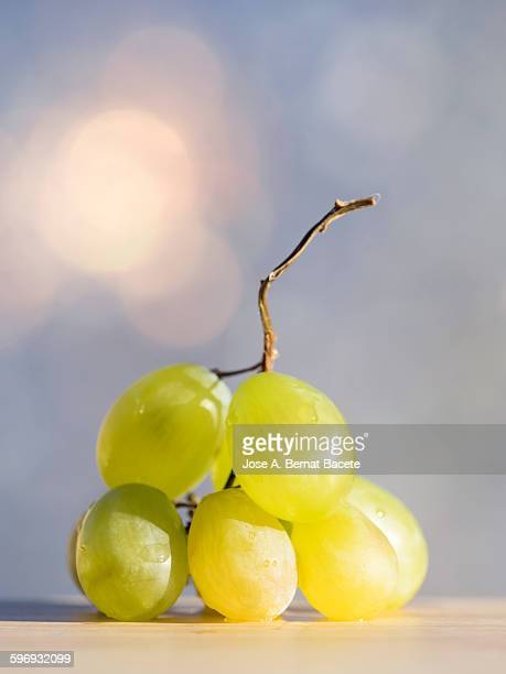 Grapes of table you mature ready to eat