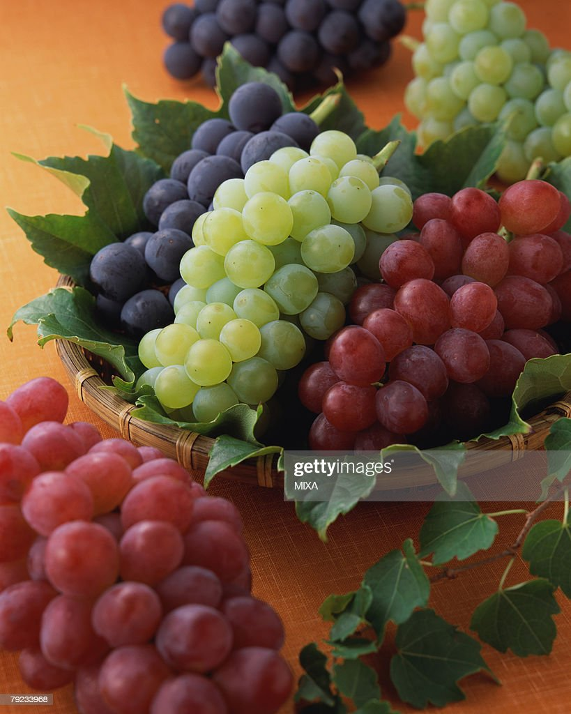 Grapes : Stock Photo
