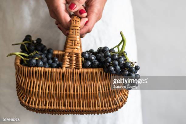 grapes (2) - susanne ludwig stock pictures, royalty-free photos & images