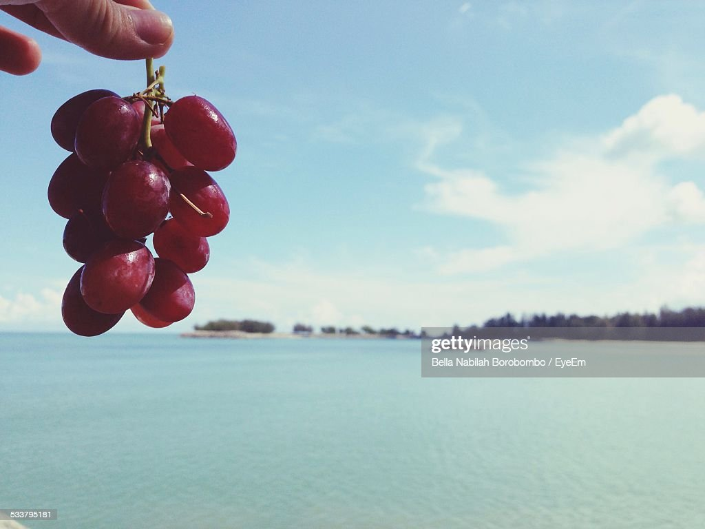 Grapes With Sea In Background : Foto stock