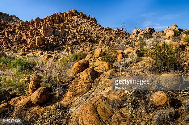 grapevine hills - chihuahua desert stock pictures, royalty-free photos & images