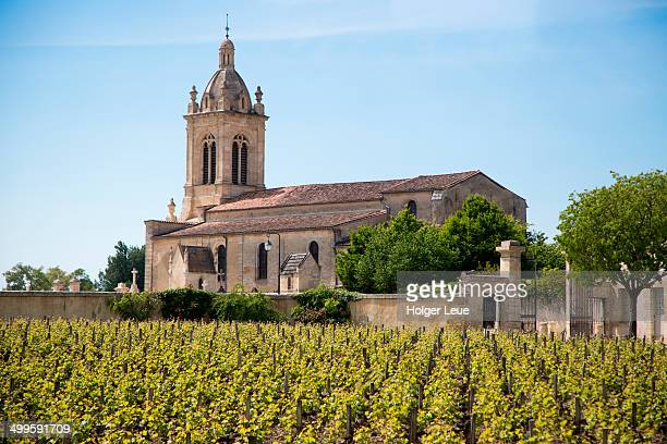 grapevines and church at chateau margaux - margaux stockfoto's en -beelden
