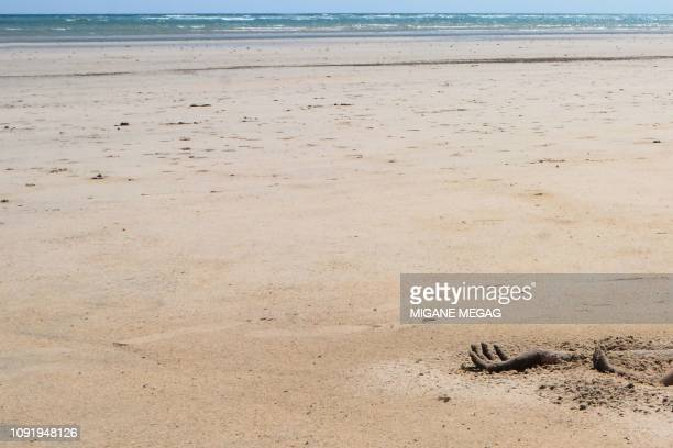 Graphic content / A hand of a victim is seen on a beach after the capsizing of two boats earlier this week off Djibouti's northeastern Obock region...