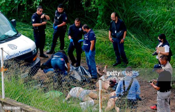 Graphic content / Forensic experts and police officers work at the crime scene where six corpses were found piled up in Tlajomulco de Zuniga, Jalisco...
