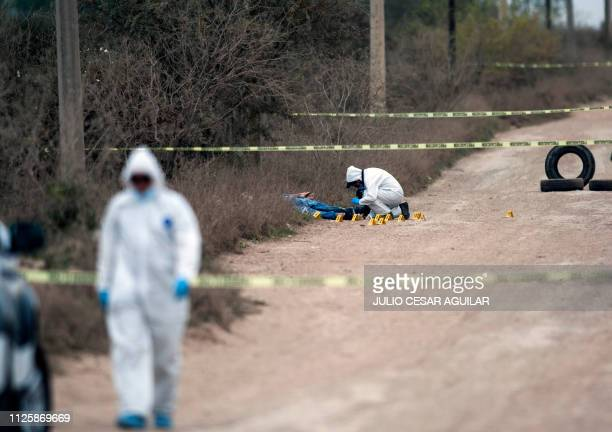 Graphic content / Forensic personnel works at the site where four men were murdered on a road in Pesqueria Nuevo Leon Mexico on February 19 2019 /...