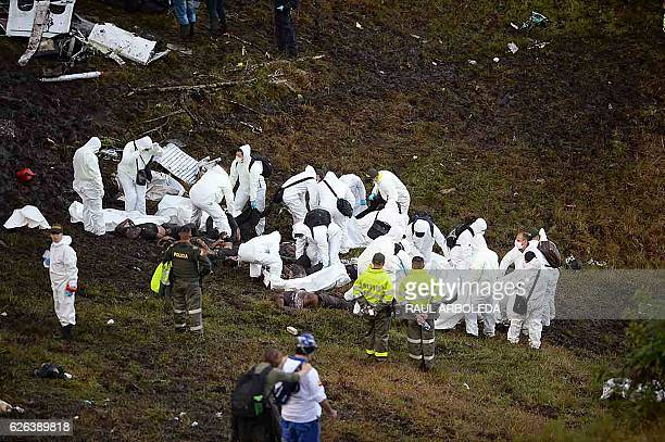 Graphic content / Members of the forensics team recover the bodies of victims of the LAMIA airlines charter plane crash in the mountains of Cerro...