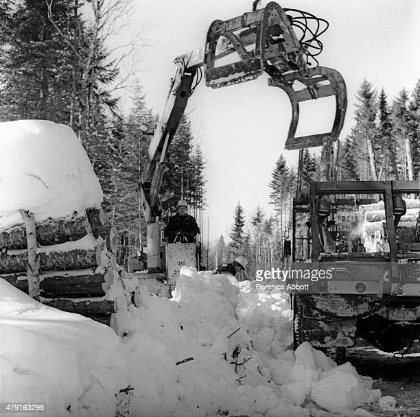 Grapple skidder loading cord wood in the snow United States circa 1950 Abbott took two series of logging photographs the first in the High Sierra...