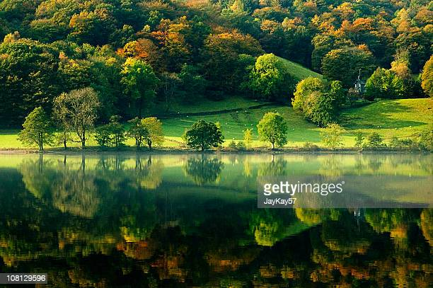 grasmere lake reflection - lake district stockfoto's en -beelden