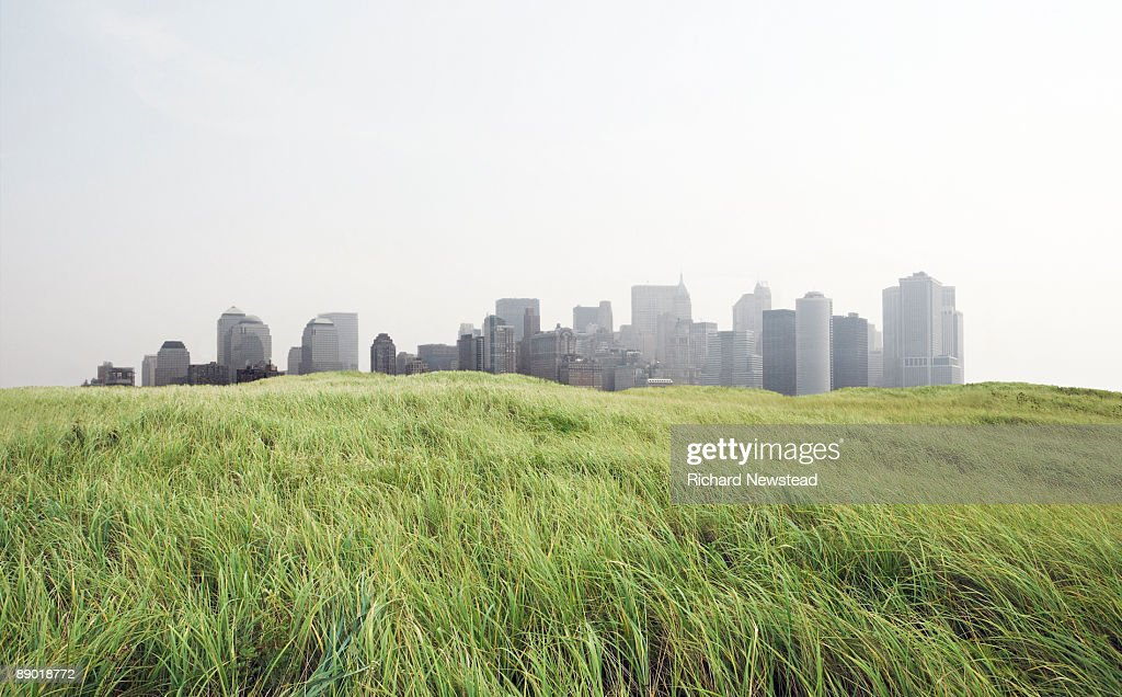 Grass and Cityscape : Stock Photo