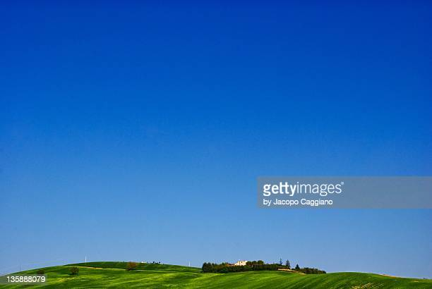 grass and sky - jacopo caggiano stock pictures, royalty-free photos & images