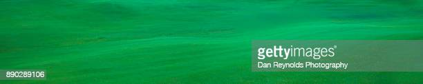 grass as panoramic - golf tournament stock pictures, royalty-free photos & images