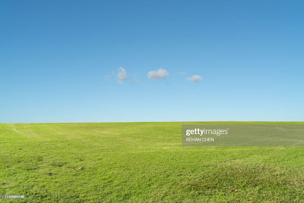 Grass background against sky : Stock Photo
