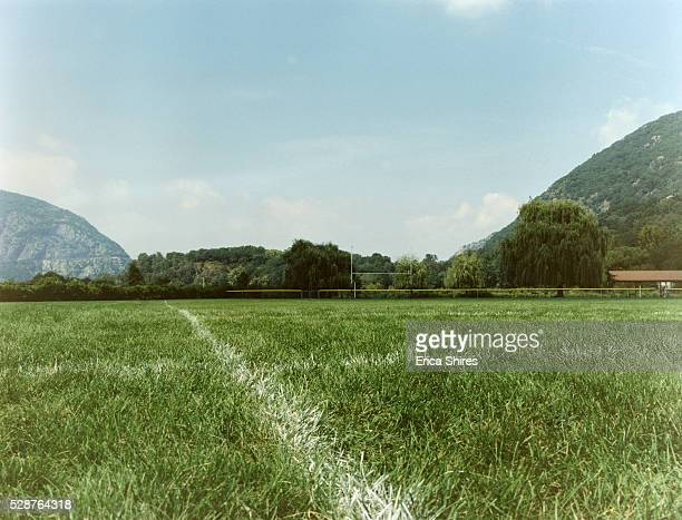 grass court - grass court stock pictures, royalty-free photos & images