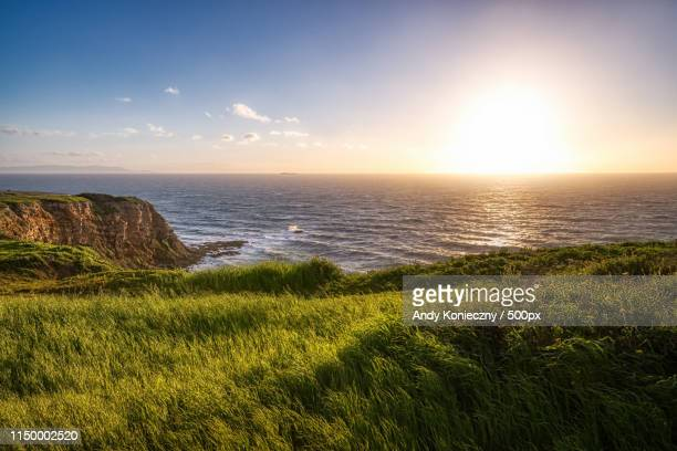 grass covered point vicente bluff - rancho palos verdes stock pictures, royalty-free photos & images