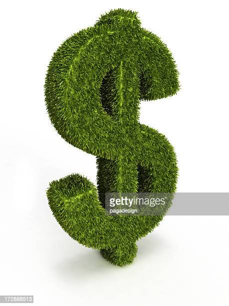 grass dollar - dollar sign key stock photos and pictures