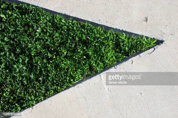 grass enclosed in a triangle of concrete - triangle shape stock pictures, royalty-free photos & images
