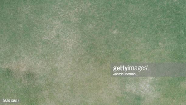 Grass field aerial