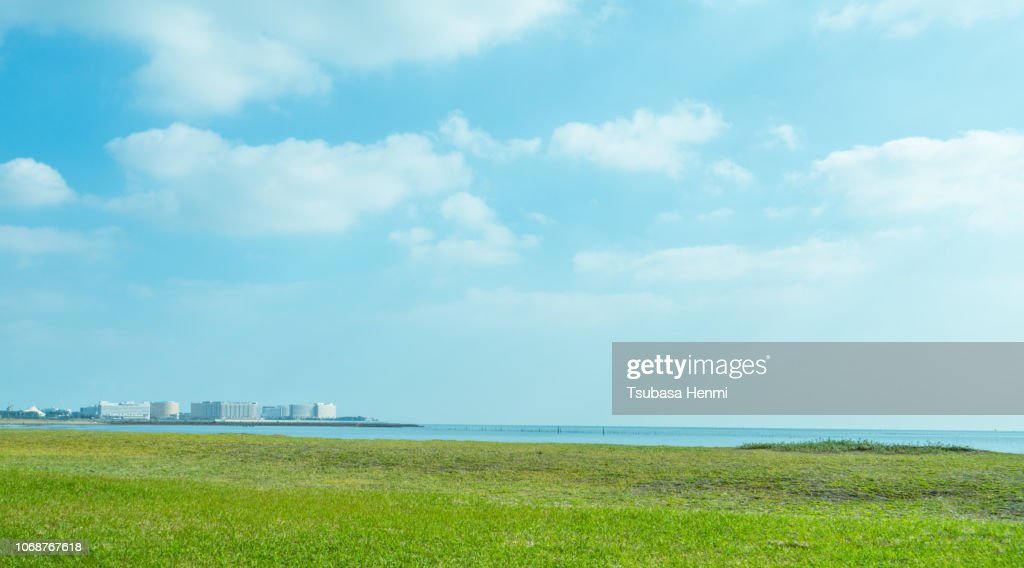 grass field lake landscape park background material : Stock Photo