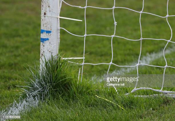 Grass growing around the goalpost during the Cherry Red Records Combined Counties Football League Division One match between Bedfont Feltham and...