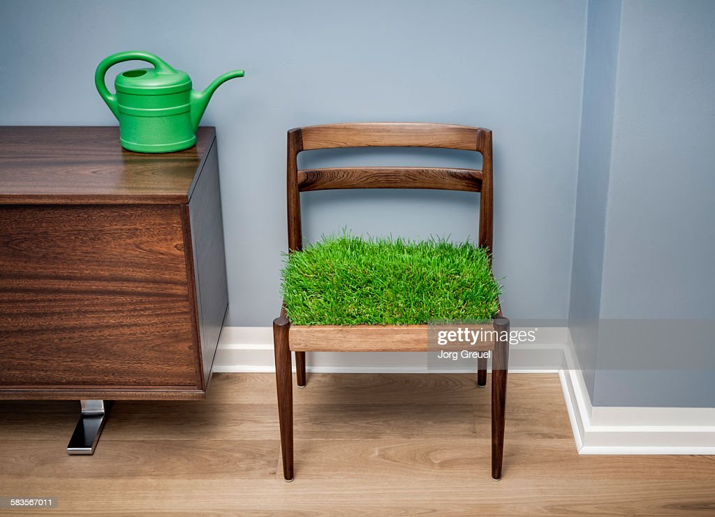 Grass growing on a chair : Stock Photo