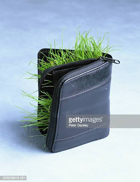 Grass growing out  wallet