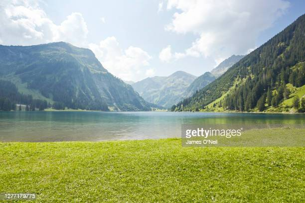 grass pasture with lake and background mountains - lake stock-fotos und bilder