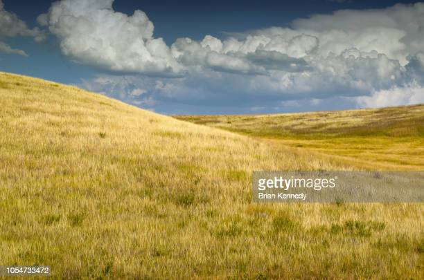 grass prairie hill landscape under a big sky - grass area stock pictures, royalty-free photos & images