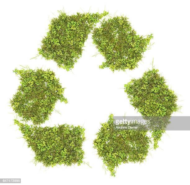 grass recycling symbol - andrew dernie stockfoto's en -beelden