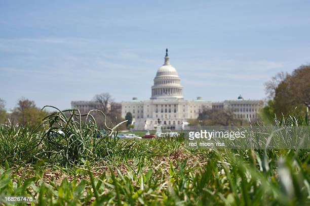 grass root politics - environmental protection agency stock pictures, royalty-free photos & images