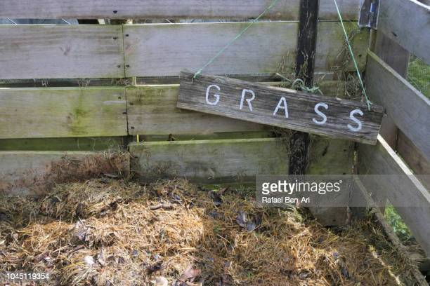 grass sign in compost container - rafael ben ari stock pictures, royalty-free photos & images