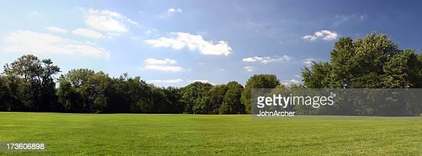árvores e grama céu - largo descrição geral - fotografias e filmes do acervo