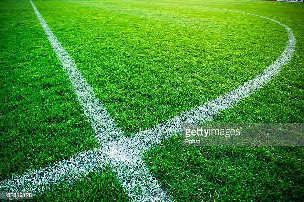 grass turf on a sports field - football pitch stock pictures, royalty-free photos & images