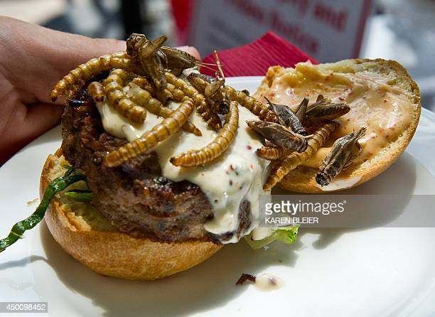 A grasshopper burger topped with dried grasshoppers and mealworms is seen June 4 2014 during a global Pestaurant event sponsored by Ehrlich Pest...